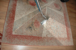 carpet-cleaning-magic